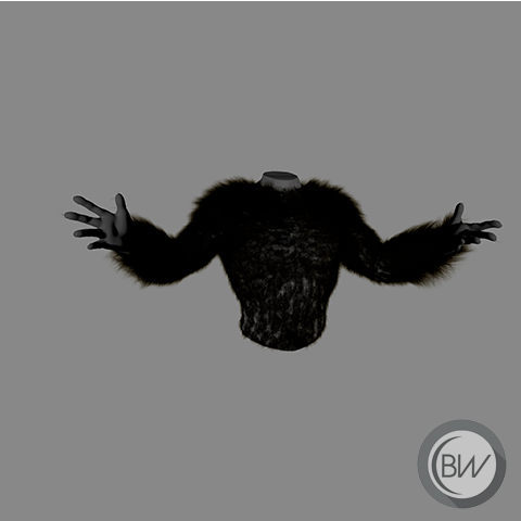 Fur | 2017<br>Fur, hair, feathers, etc. can be applied to 3D models aswell. Using the XGen geometry instancer to procedurally create fur gives it more realism.